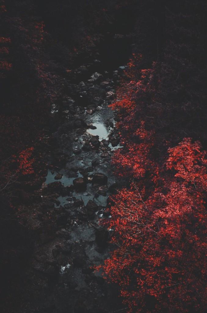 Autumnal Androidthemes