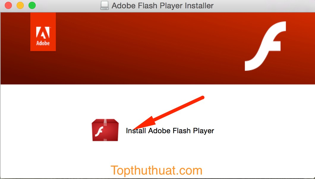 Flash Player Activex Is Not Installed - shoeinstalzone