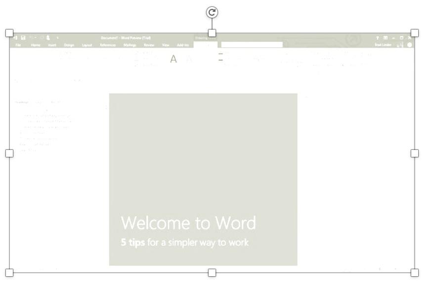 chèn hình ảnh vào word