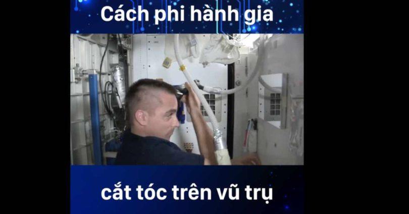 CAT TOC