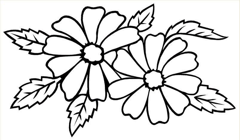 tranh to mau cho be chu de hoa qua