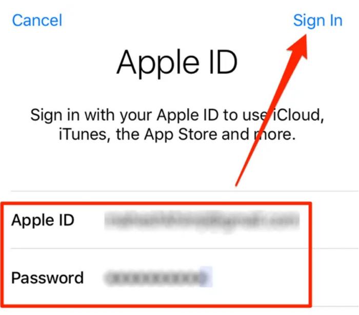 bạn nhập tên người dùng và mật khẩu Apple ID