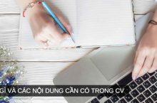 CV là gì? Các nội dung cần có khi tạo CV xin việc